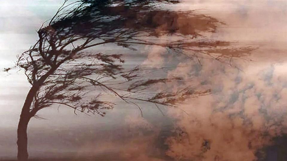 МЧС Свердловской области рассылает штормовое предупреждение на 19 октября
