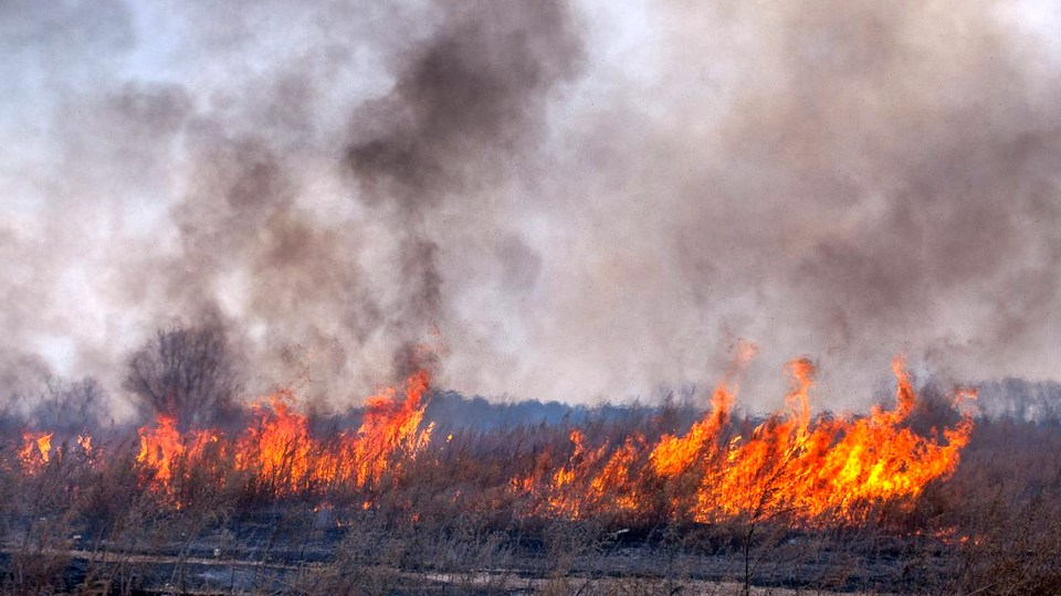 Красноярск задыхается от дыма лесных пожаров