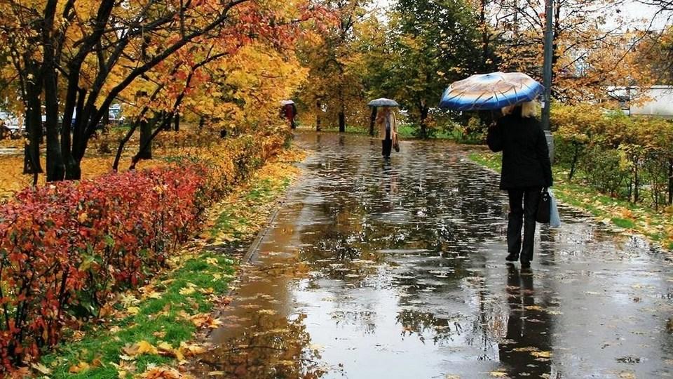 Свердловскую область заливает дождями