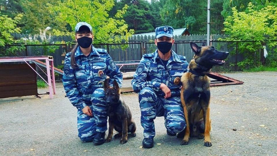 """""""Бельгиец"""" и """"немец"""" приняты на службу в каменский гарнизон полиции"""