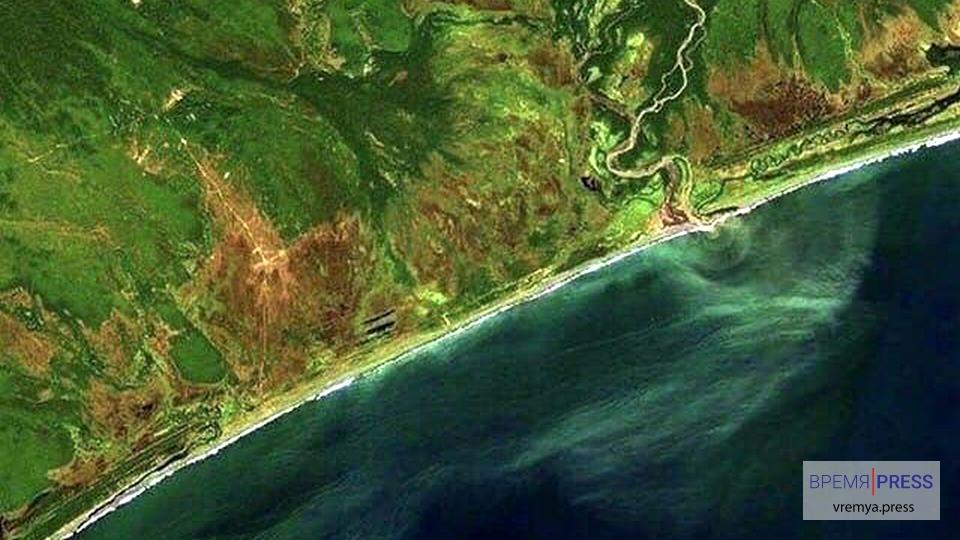 Последняя информация о загрязнении океана на Камчатке
