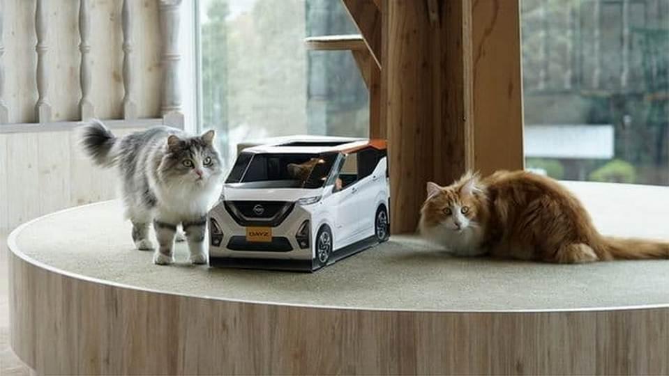 Коты помогли прорекламировать новый автомобиль Nissan
