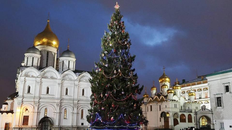Соборную площадь Кремля украсит 96-летняя елка