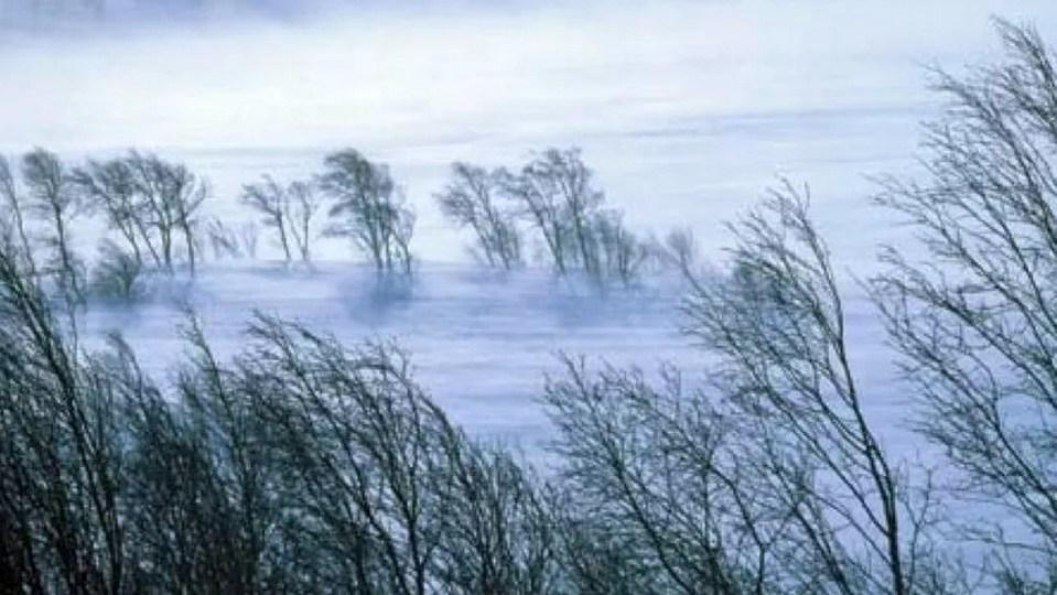 МЧС Свердловской области предупреждает о сильном ветре и гололедице