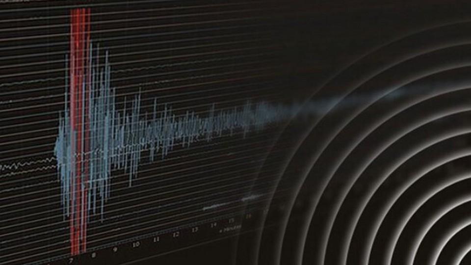Землетрясение в Чечне: что известно