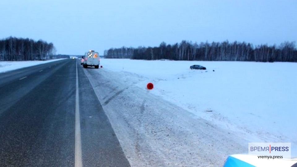 Лиса стала причиной смертельного ДТП на трассе Тюмень-Омск
