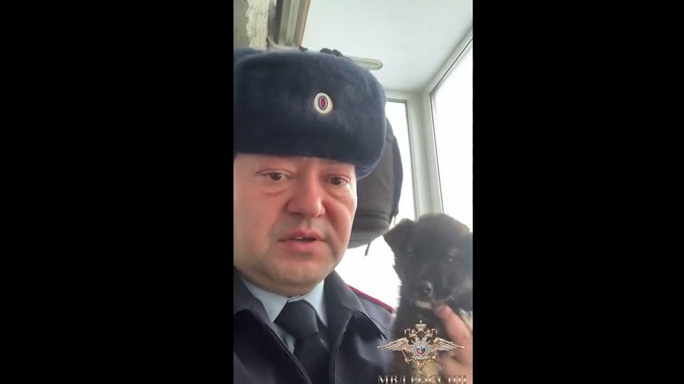 Полицейские ХМАО спасли бездомного щенка