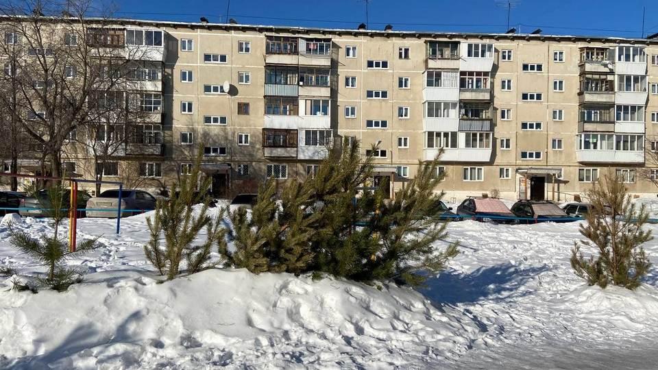 Огромное кладбище елок появилось в Каменске-Уральском