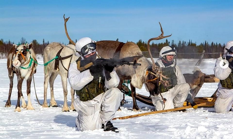 Морпехи-разведчики Северного флота осваивают мастерство езды на оленьих упряжках