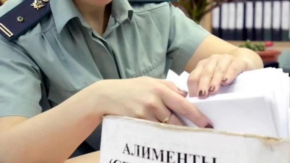 Две жительницы Каменска-Уральского задолжали выплаты по алиментам более 2 млн рублей