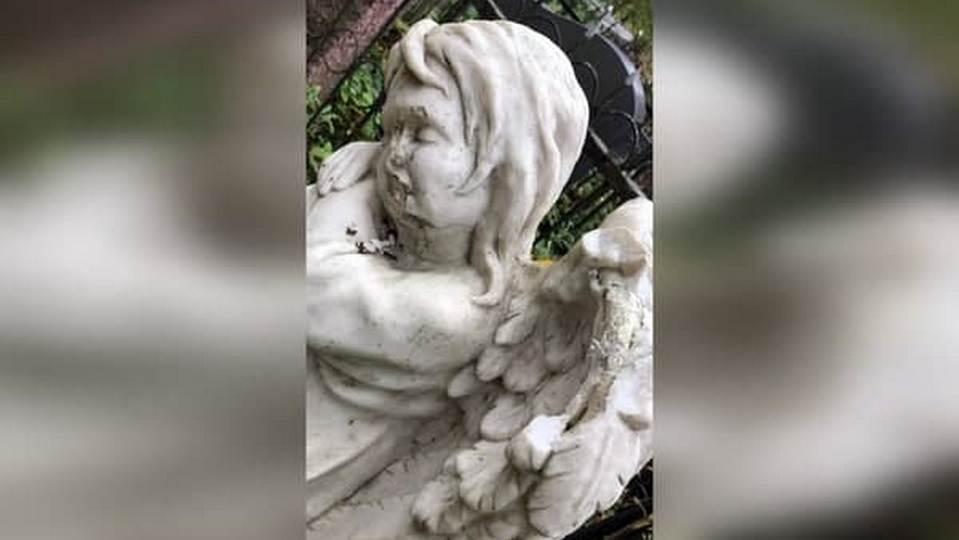 В Петербурге задержали вандала, много лет громившего скульптуры ангелов на кладбищах