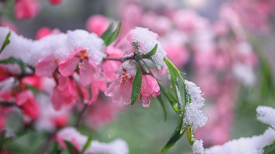 Свердловской области обещают похолодание до -6 и снег