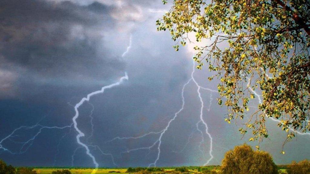 В МЧС предупредили, что Свердловскую область ожидают сильный ветер и грозы