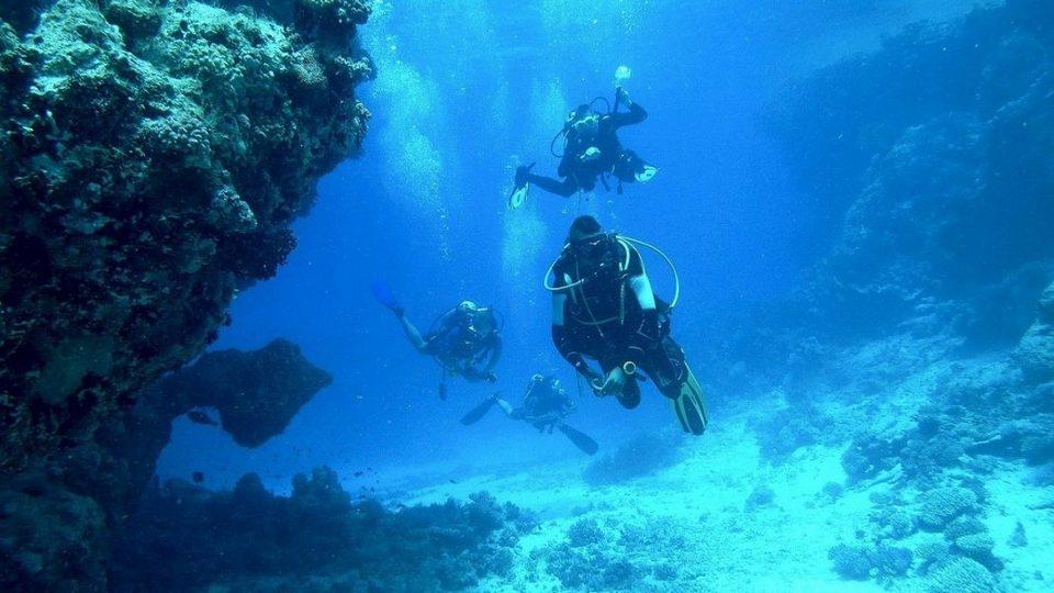 Первая в России подводная туристическая экотропа появилась на Алтае