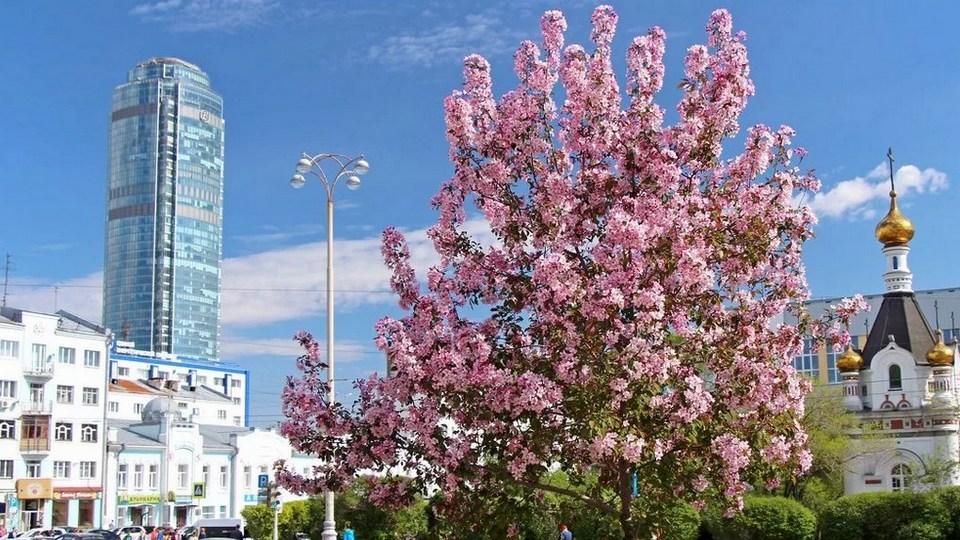 Гидрометцентр предрек аномально теплый май и начало лета в России