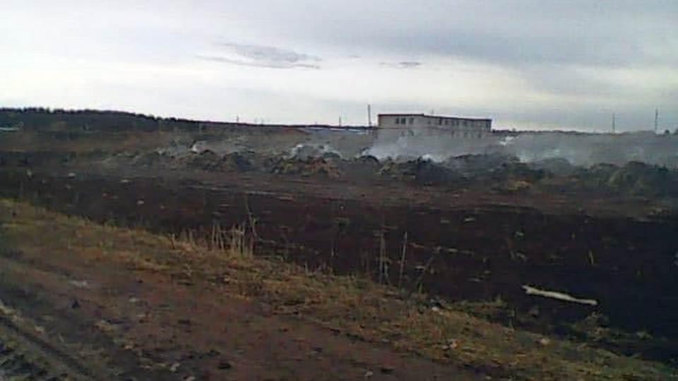 Пермские школьницы сожгли ферму, записывая видео в TikTok