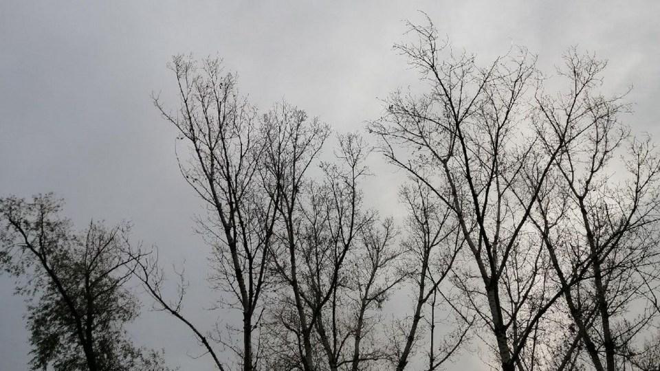 МЧС Свердловской области продлило штормовое предупреждение до 4 мая