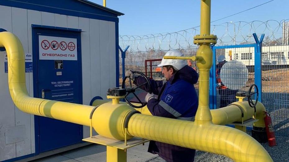 Госдума приняла законопроект о бесплатной газификации до земельного участка