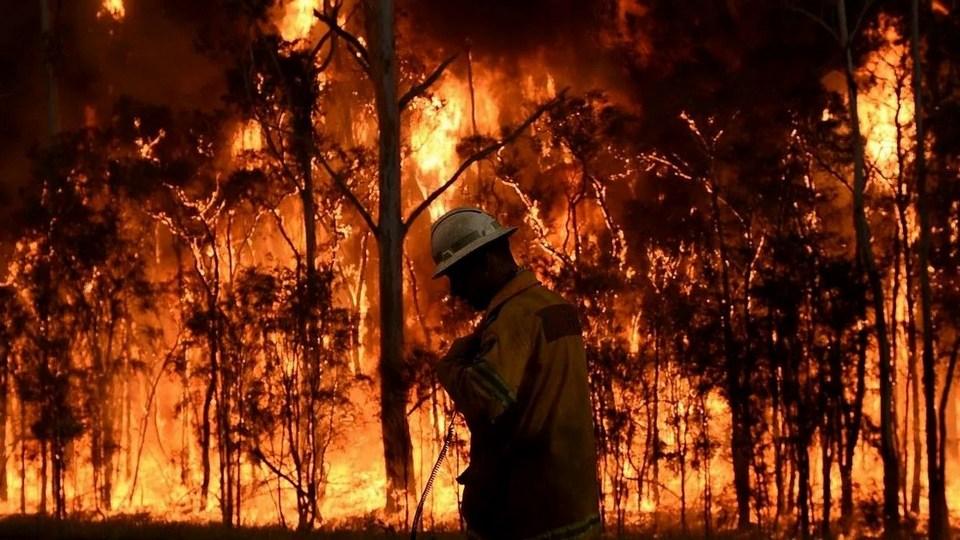 Куйвашев распорядился наградить свердловских сотрудников МЧС, тушивших пожар под Тюменью