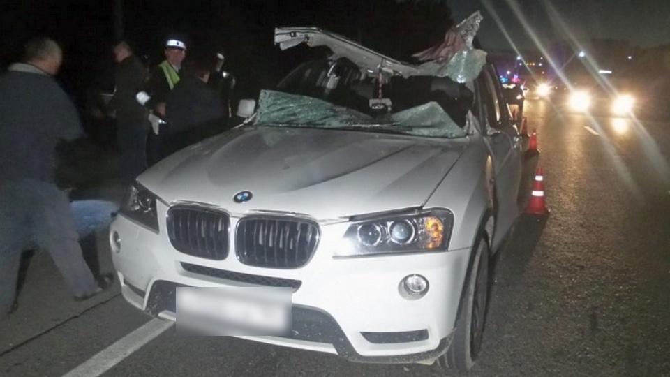 Под Екатеринбургом погиб водитель, на машину которого отлетел сбитый лось