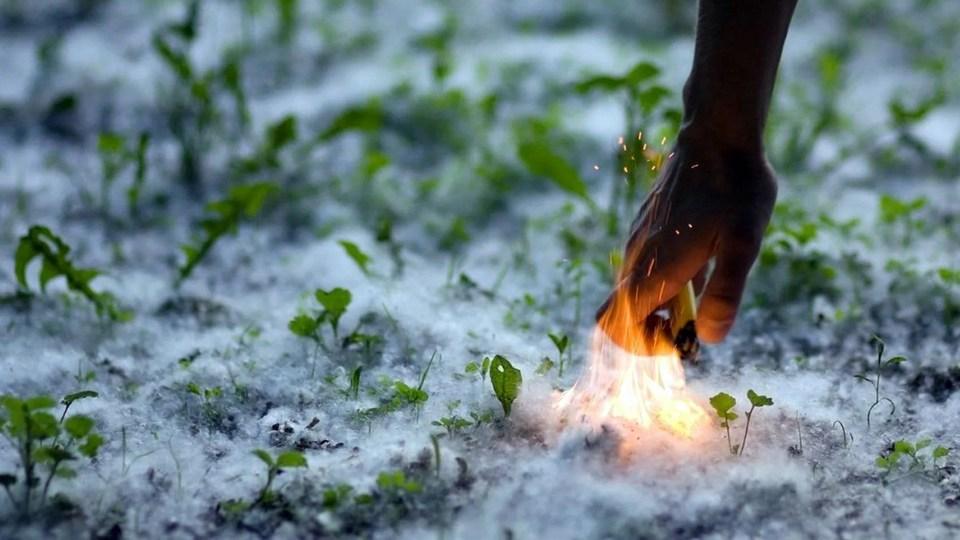 В Каменске-Уральском организуют полив газонов для борьбы с пожарами