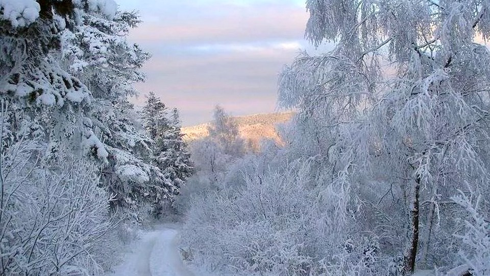 Климатолог Торопов опроверг исчезновение зим в России