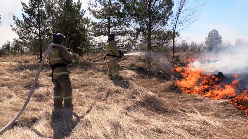 Ди Каприо не помог: в Якутии перестали тушить лесные пожары из-за нехватки ресурсов
