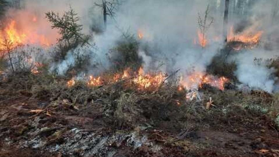 Свердловскую область накрыл смог от пожаров в Якутии