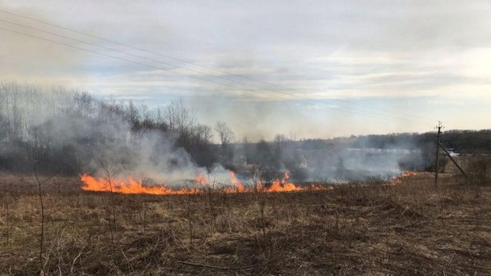 Дым и смог от пожара под Первоуральском добрался до Екатеринбурга