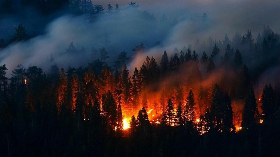 Площадь пожара у озера под Екатеринбургом достигла 500 гектаров